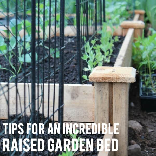 Tips For an Incredible Raised Garden Bed!