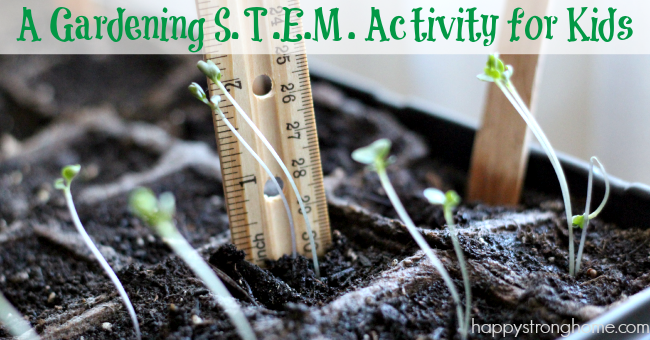 Gardening STEM Activity for Kids