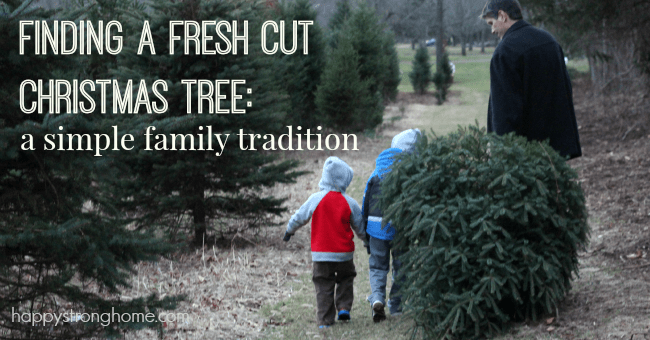 Finding a Fresh Cut Christmas Tree – our simple family tradition