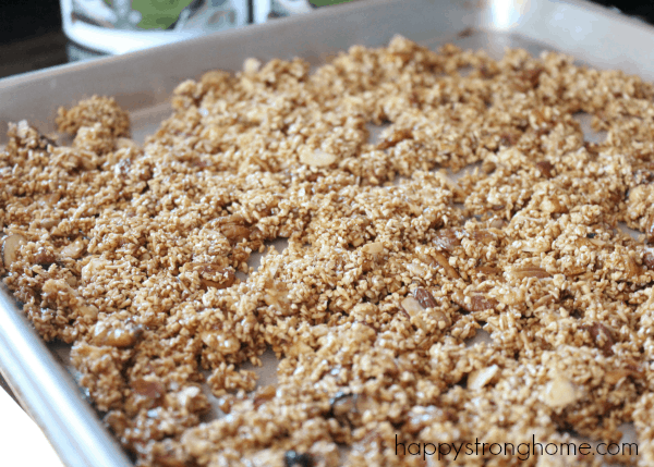Steel Cut Oats Granola Recipe