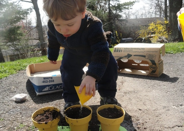 bean planting with kids