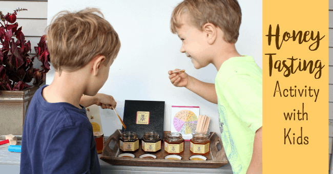 Honey Tasting Activity With Kids