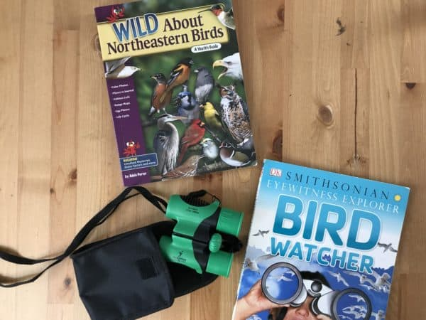 birdwatching for kids