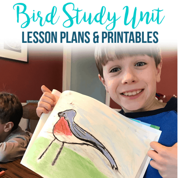 Bird Study Unit ~ Homeschool Lessons & Printable